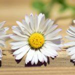 シミを防ぐ化粧品紹介とシミの原因