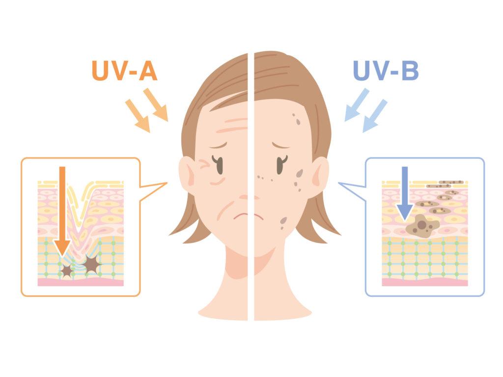 紫外線とUVAとUVB